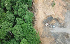 Bygging i regnskogen