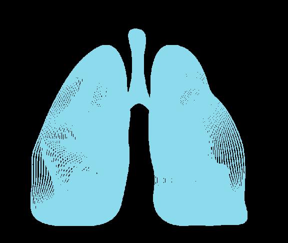 pulmonaler Hypertonie (PAH)