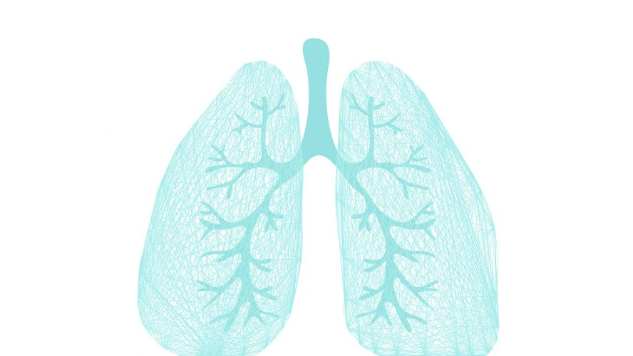 Lungs symbol. Breathing. Lunge exercise. Lung cancer (asthma, tuberculosis, pneumonia). Respiratory system. World Tuberculosis Day. World Pneumonia Day. Health care