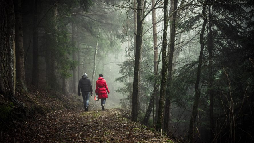 walking couple woods forest sudden
