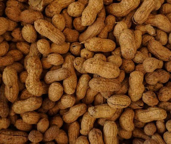 peanut allergy allergens