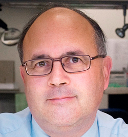 Prof. dr. Patrick Pauwels, Kliniekhoofd Pathologische Anatomie UZA.