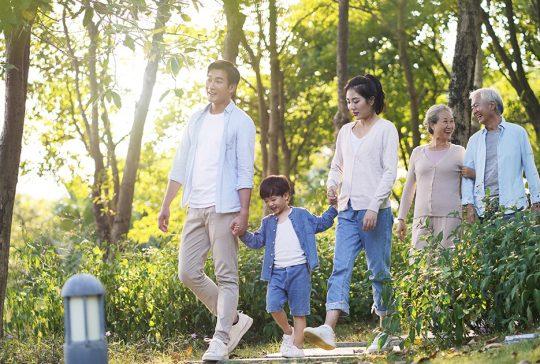 Family walking through park