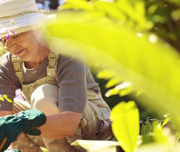 Moden kvinde arbejder i sin have