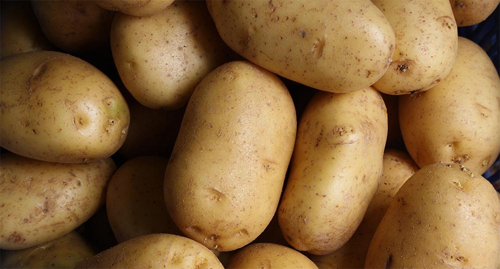 Kotimainen peruna