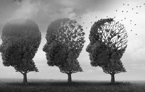 træer der symbolisere et mennesker får revet bladende væk af vinden