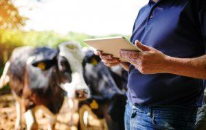 Shot of a farmer using a digital tablet on his farm