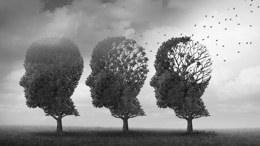 Concept of memory loss and brain aging due to dementia and alzheimer's disease as a medical icon with fall trees shaped as a human head losing leaves with 3D illustration elements.