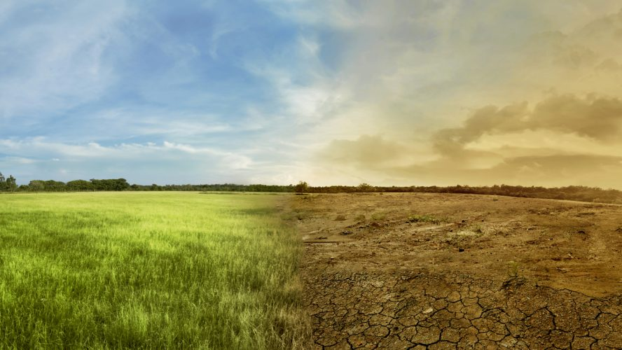 Landscape of meadow field with the changing environment concept of climate change