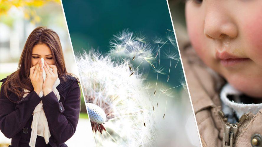 allerginen-nuha