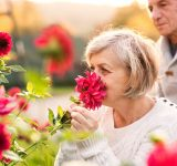 carer health