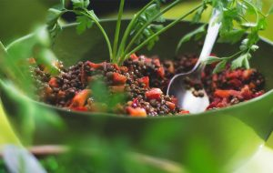Linzensalade vegetarische levensstijl