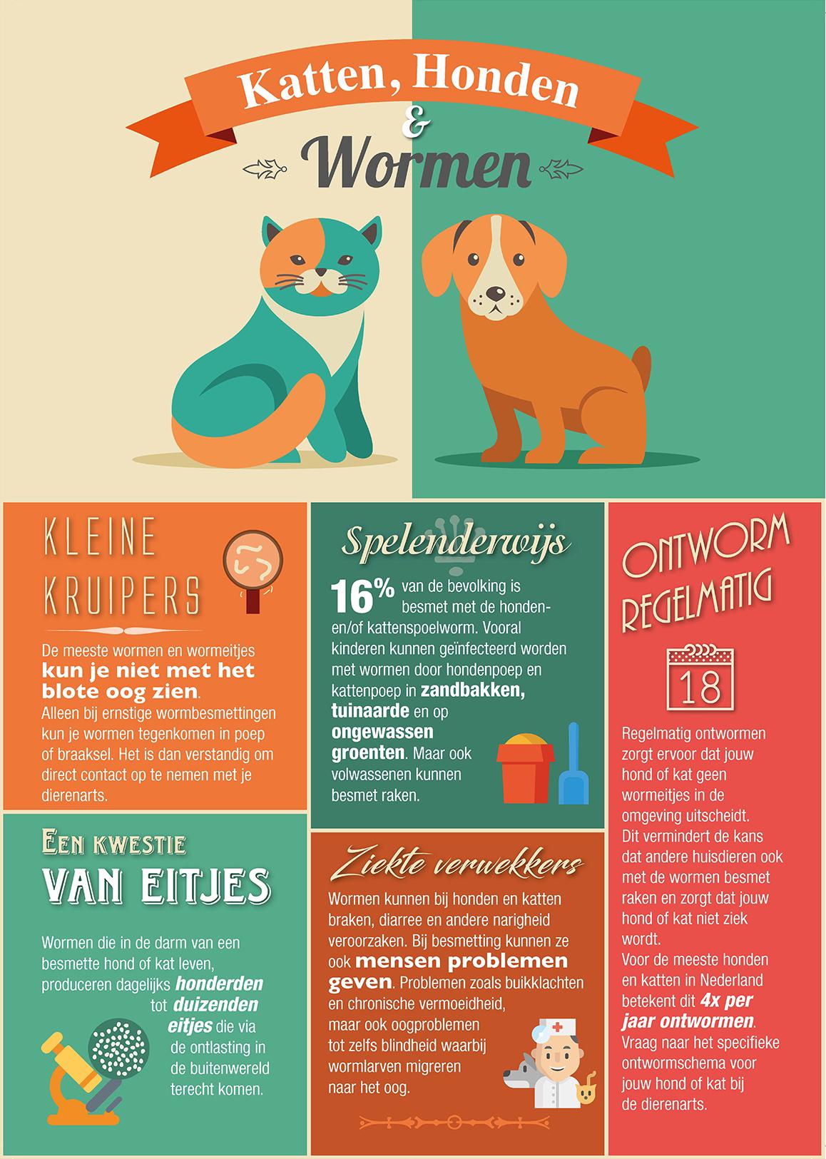 Infographic: katten, honden en wormen. Deze infographic legt uit wat wormen zijn, waar ze voorkomen, wat de gezondheidsproblemen zijn en hoe je je huisdier kan ontwormen.