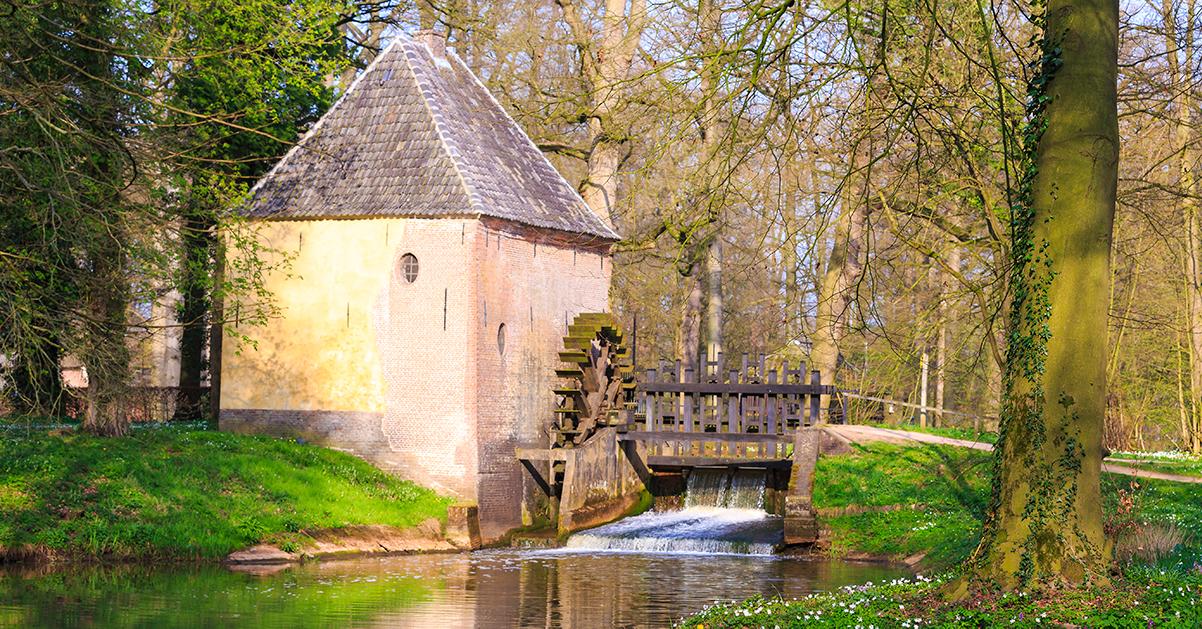 Watermolen in bosrijk landschap