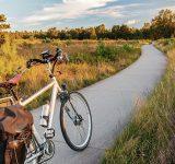 Fiets op fietspad in de Veluwe