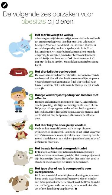 Infographic: zes oorzaken voor obesitas bij dieren