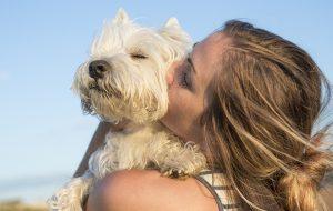 Voeding voor honden Vitakraft