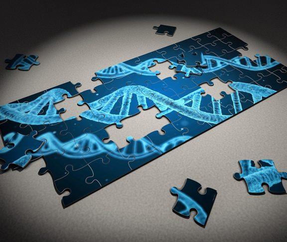 Puzzel met DNA-streng
