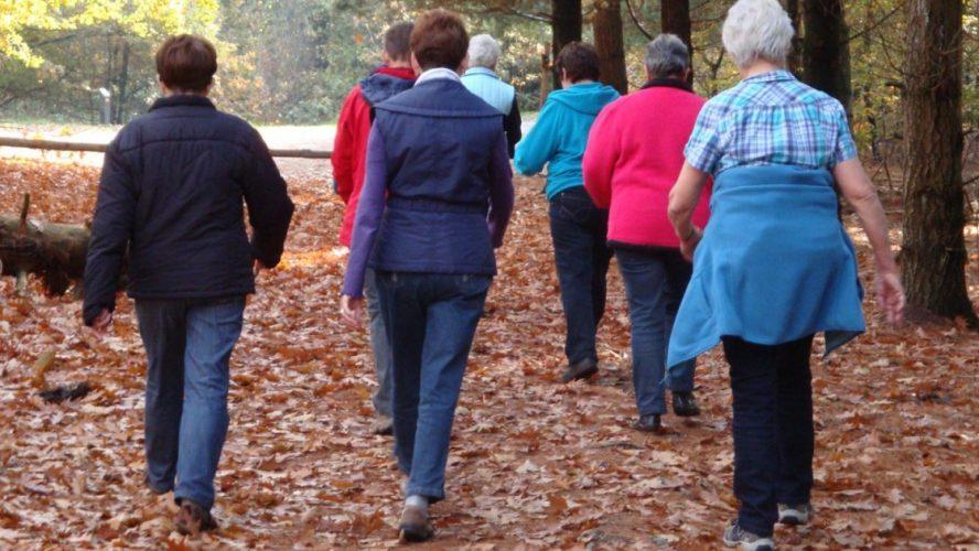 Groep vrouwen wandelt door de bossen