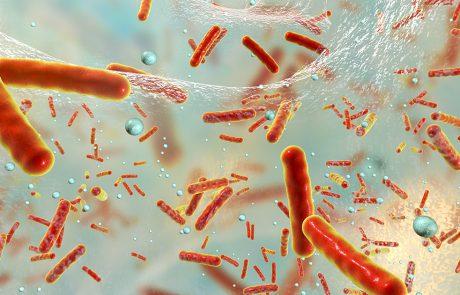 3D-beeld van bacteriën