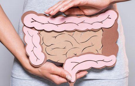 Vrouw met papieren tekening van dikke en dunne darm