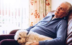 Man ligt op de bank met hond