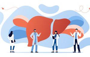 Illustratie doktoren met een lever