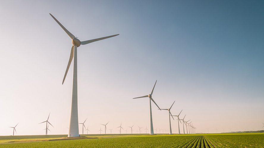 Veld met daarin windmolens om elektriciteit op te wekken.